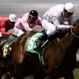 Bets10 At Yarışı 250 TL İade Bonusu